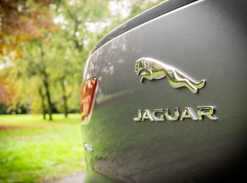 Jaguar I-PACE HSE MY19: logo Jaguar